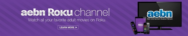 best porn channels on roku aebn vod