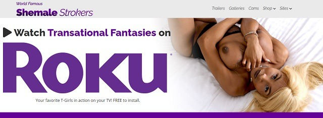 best porn channels on roku shemale strokers